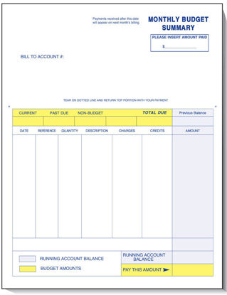 Picture of Budget Summary Statement for Marketline Software